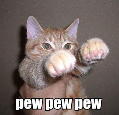 capsuleer kitty